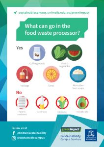 What can go in the food waste processor