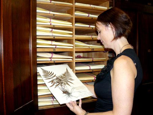 Gill Brown Unimelb Herbarium