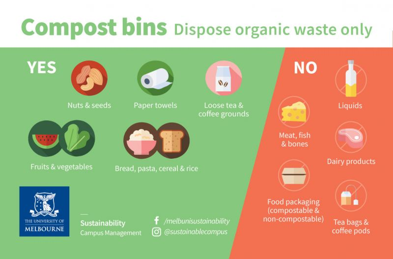 A visual representation of what can and can't go in the System Garden compost bins. The poster is bright with 2D graphics of each item listed in the text next to item.