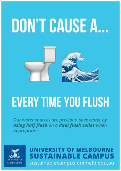 Dual Flush Toilet Poster