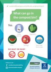 What can go in the compost bin